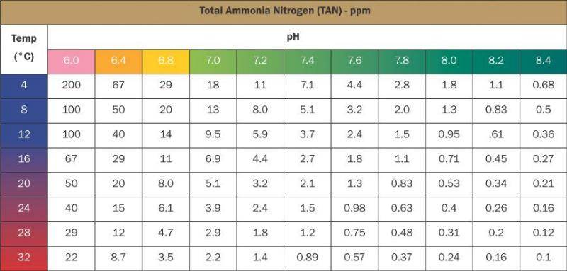 Rate of death of fish aquaponics forum at permies for High nitrite in fish tank