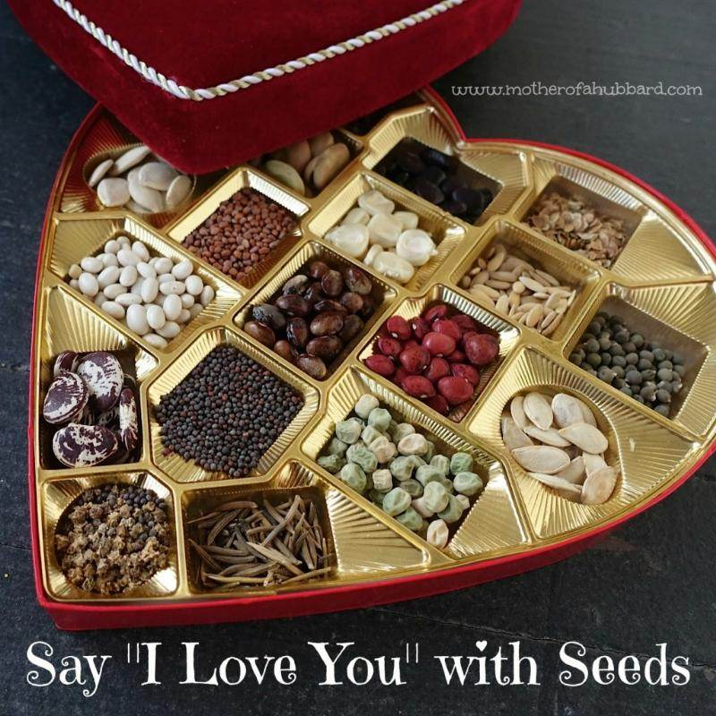 seeds in a chocolate box