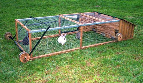 Free range meat rabbits advice appreciated please for Cage lapin exterieur