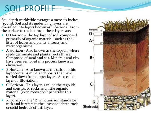 Here is our micro homestead enjoy homestead forum at for Soil composition definition
