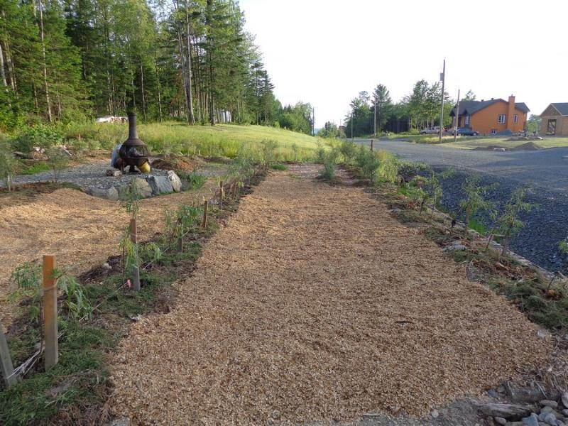 You will find tons of uses for large quantities of mulch. We love using wood  chips ... - How Should I Use A Large Quantity Of Wood Chips? (mulch Forum At