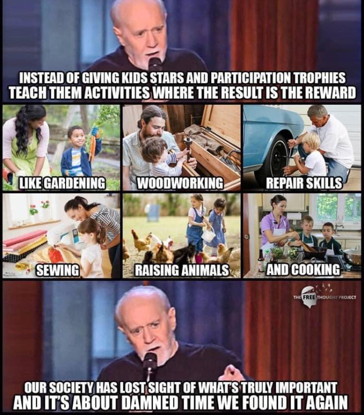 george carlin meme about teaching skills like gardening and repair instead of giving participation points