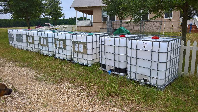 Ibc Totes For Cattle Water At 1880 Farm Cattle Forum At Permies