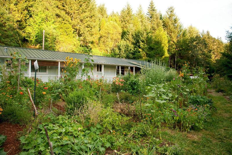 51 Acre Permaculture Homestead For Sale In Cottage Grove