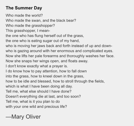 [Thumbnail for the-summer-day-by-mary-oliver.jpg]