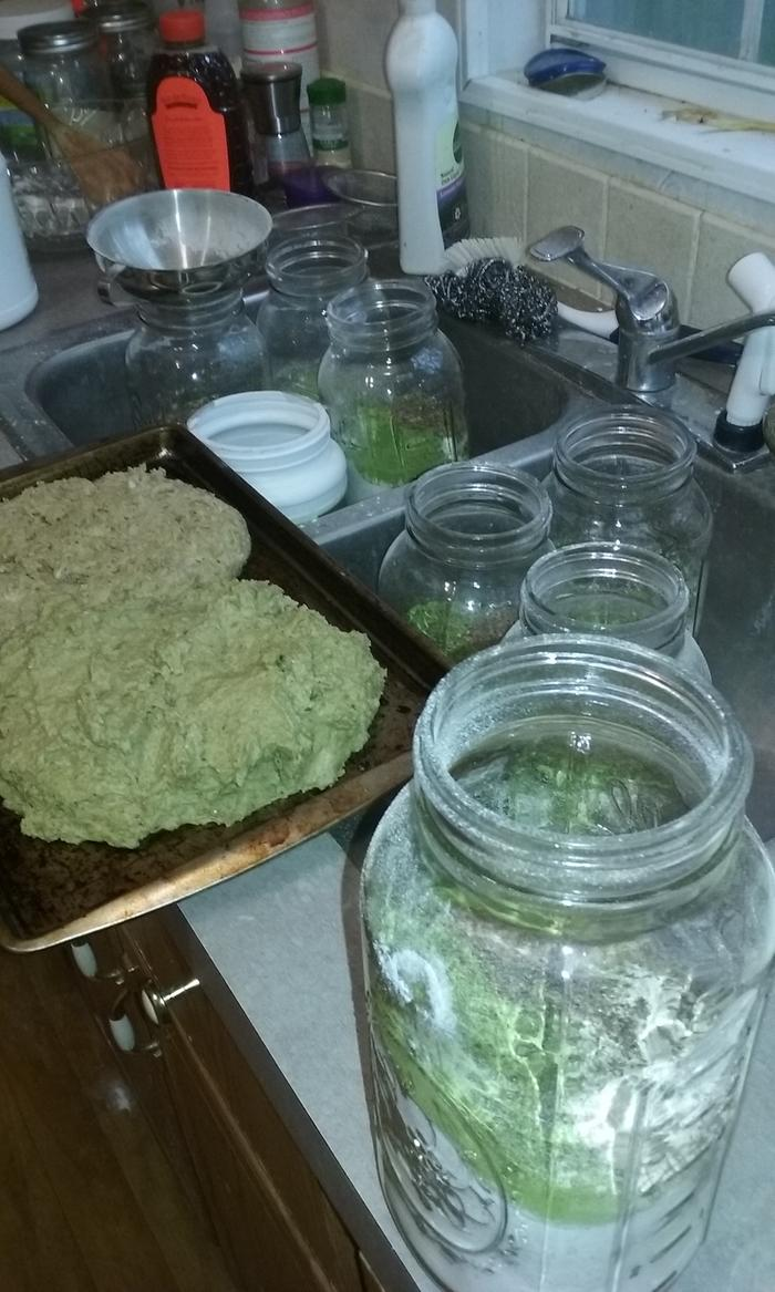 I have started making my own moringa bread.