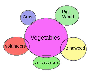 [Thumbnail for companion-planting.png]