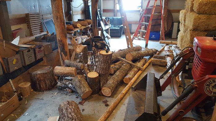 Setting up logs to cut into splittable wood. Again I&I give thanks to Great Spirit for these trees.