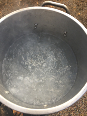 Rolling Boil - within 30 minutes