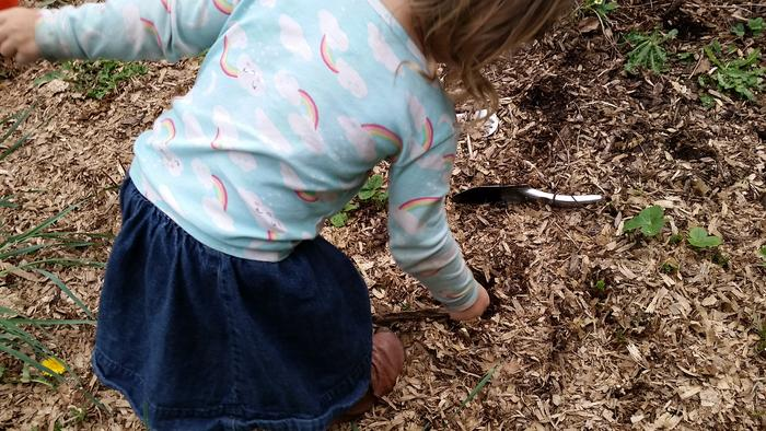 My daughter planting one