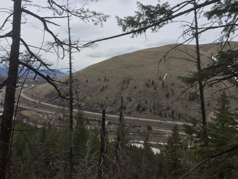[Thumbnail for IMG_6451.jpg]