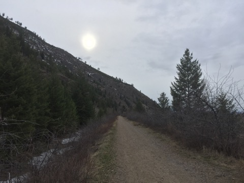 [Thumbnail for IMG_6477.jpg]