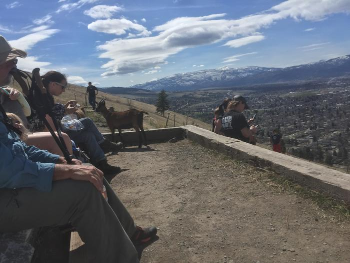 [Thumbnail for A62B2653-ED49-48F0-B8A5-3907CA05F89A.jpeg]