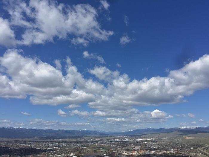 [Thumbnail for 92880C03-62F5-4E42-B4D2-00ECA23EB324.jpeg]