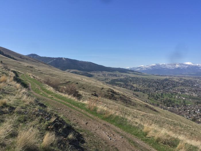 [Thumbnail for 088D7567-D0A5-4257-B755-00C3CB272B58.jpeg]