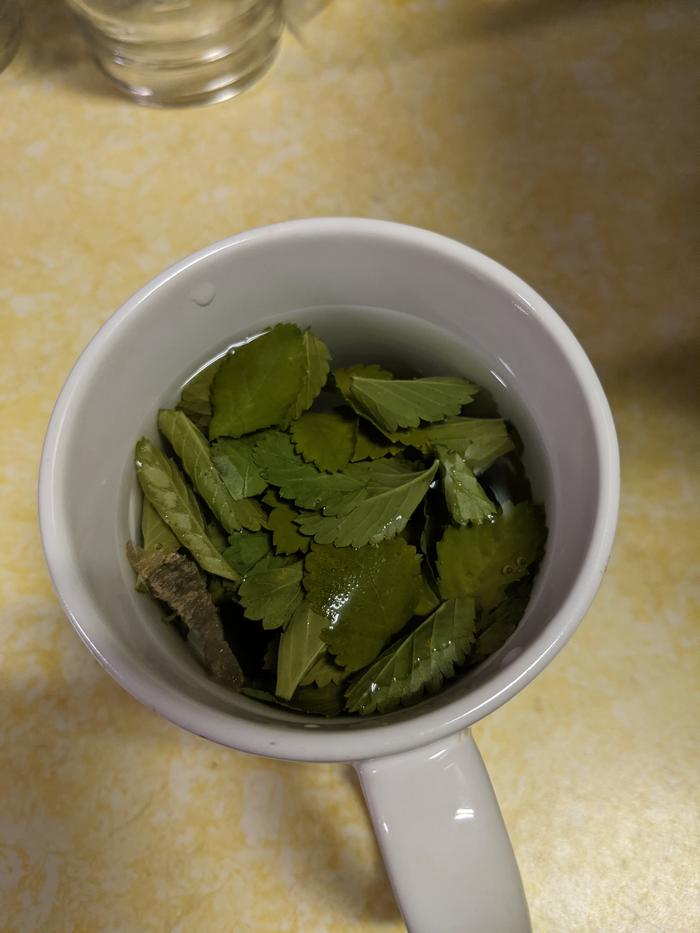 tea with leaves