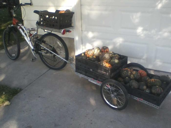 [Thumbnail for bike-trailer-squashes.jpg]