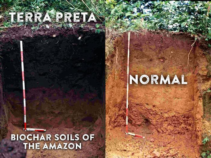 Terra Preta biochar soils of the Amazon, Ultrakultur.com