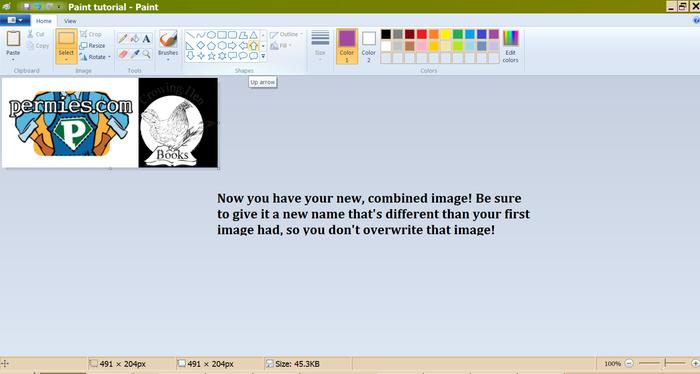 [Thumbnail for Cropping-in-Paint-step-7-tutorial.png]