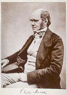 [Thumbnail for 225px-Charles_Darwin_seated.jpg]