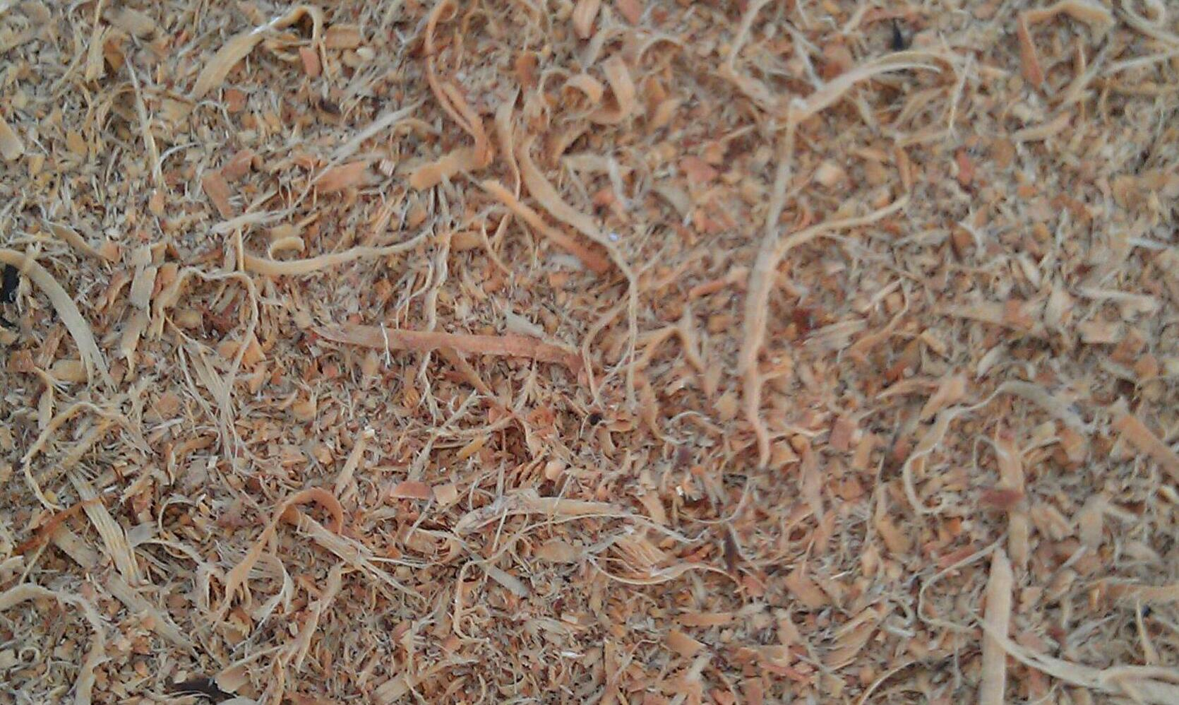 Can We Talk About Wood Chip Clay Natural Building Forum