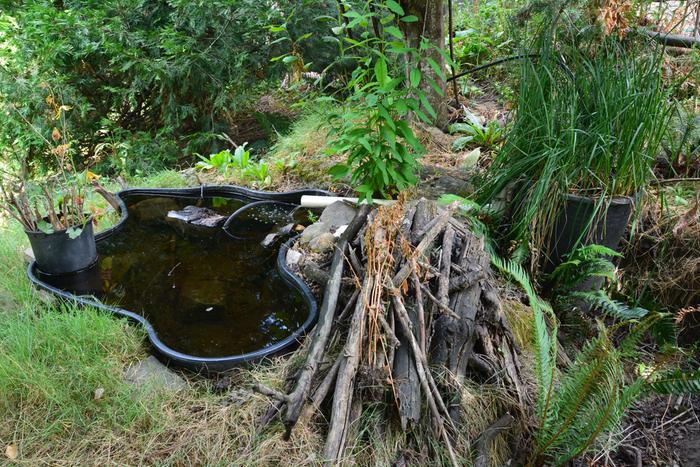 Pond on the left, biofilter on the right. The pile of sticks is for overwintering amphibians. The chunk of wood in the pond is for birds to land on, and pond life to attach to.