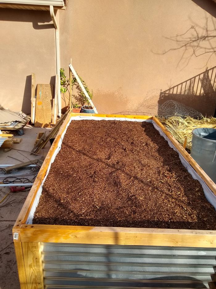 A layer of the sifted wood chip fungal compost.