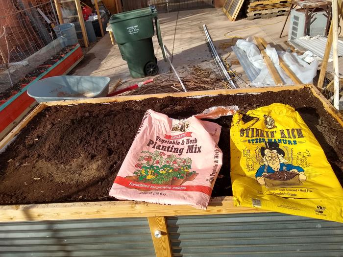 Turkey compost, mixed with peat moss, and more of my fungi rich wood chip compost, the topped with the two store bought bags of compost. (I actually get the torn open bags for free at work, so they didn't cost anything).