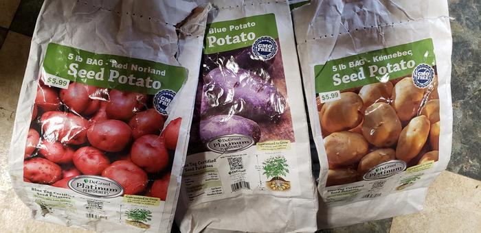 [Thumbnail for Potato-Varieties-2020.jpg]