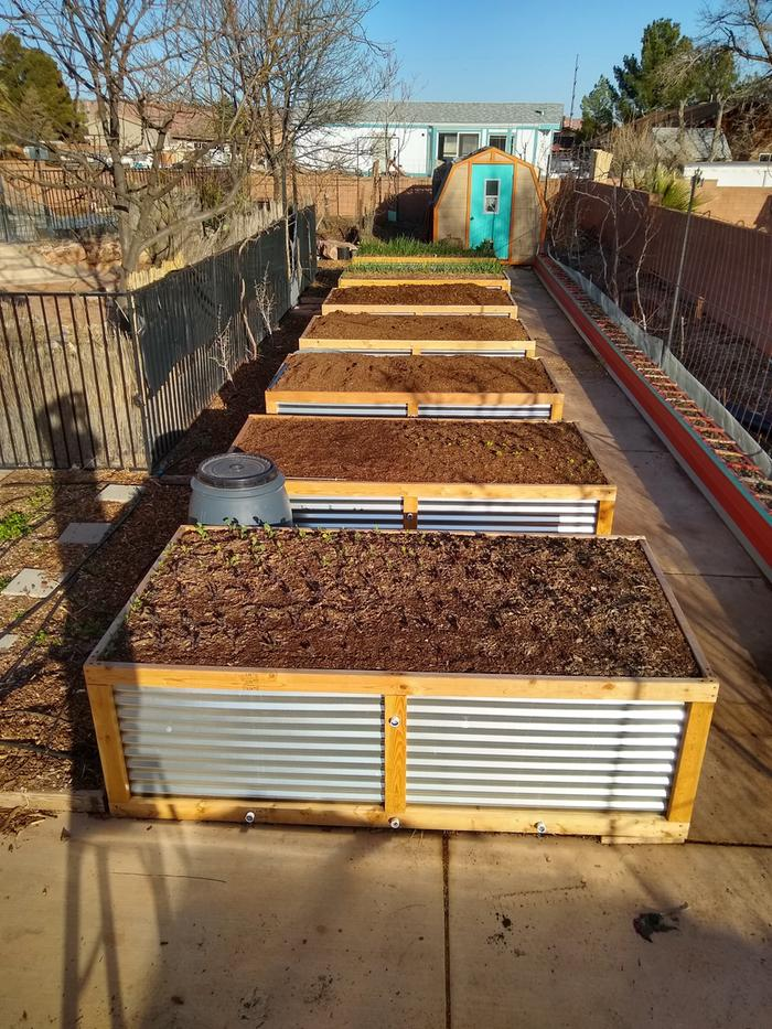 Just finished filling the last of the new raised beds last night, and stood on a ladder to get this picture.
