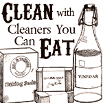 Clean with Cleaners You Can Eat - Free ebook