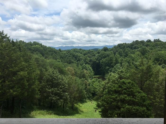 Cherokee National Forest from my back porch