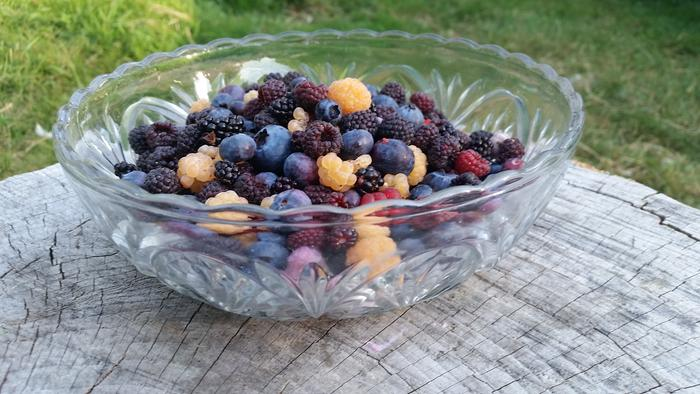 glass bowl of golden raspberries, red raspberries, blueberries strawberries, blackcap raspberries