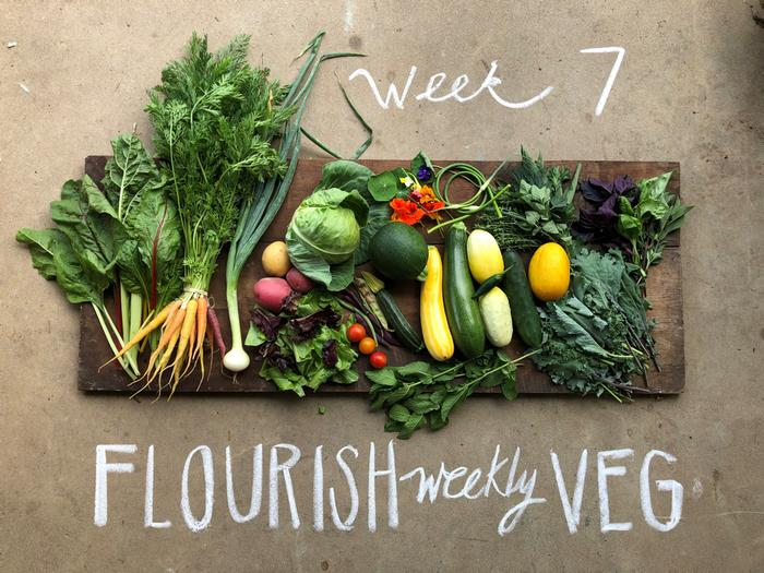 [Thumbnail for flourish-weekly-veg.jpg]