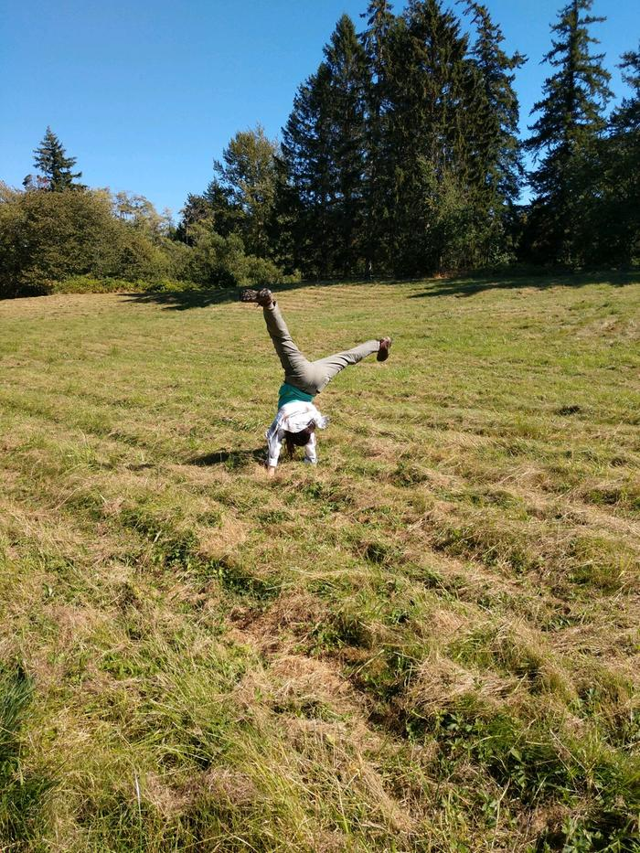 Cartwheels in the rolling hill hay field of our new property