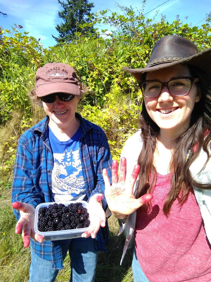 Taking a break from packing to pick blackberries from the northern boundary of our new property