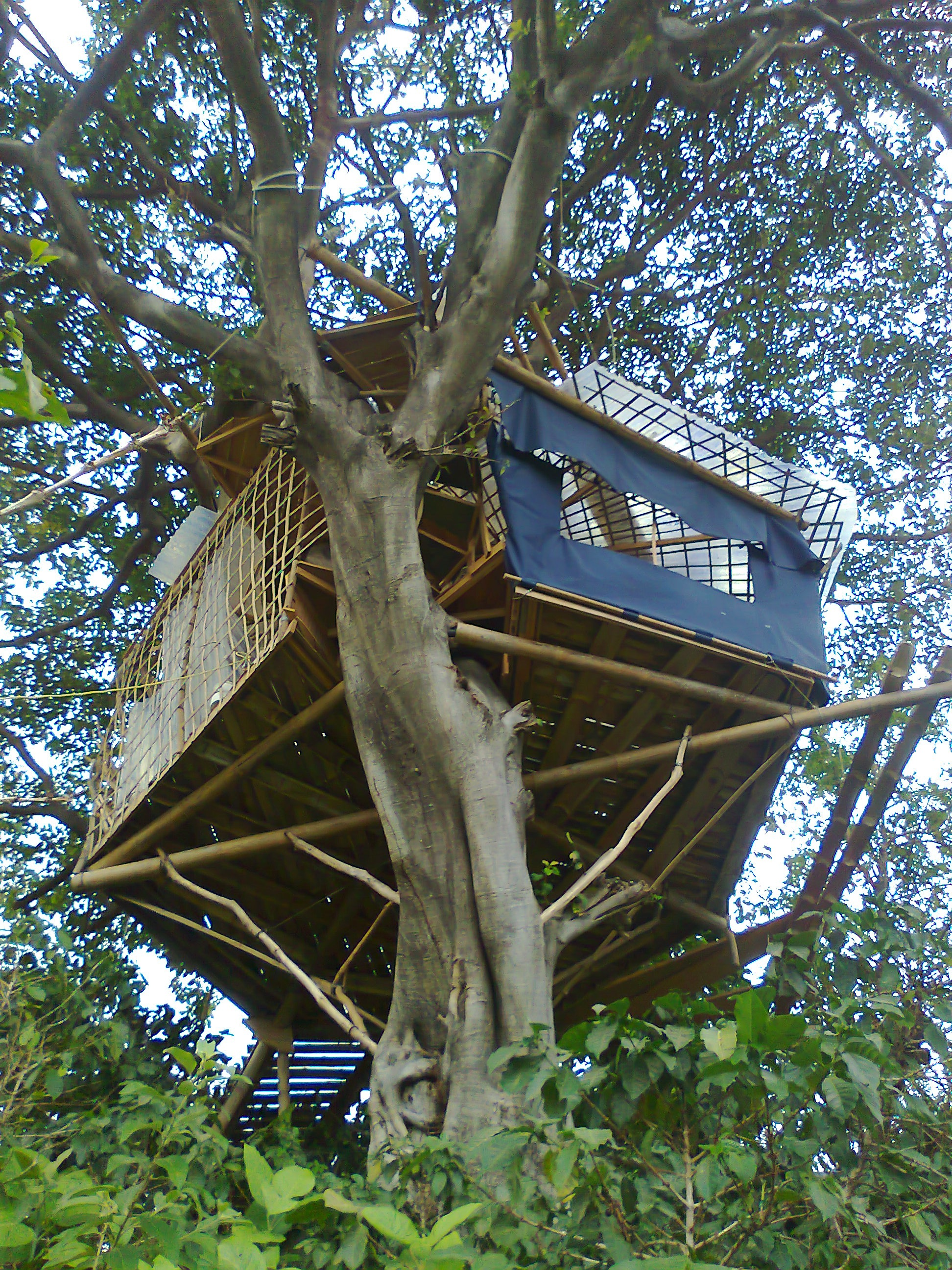 treehouses natural building forum at permies