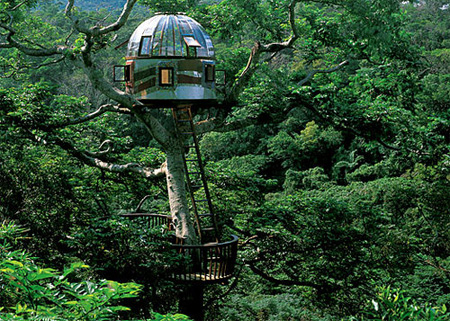 [Thumbnail for treehouses06.jpg]