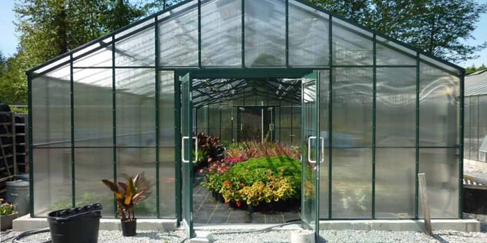 large greenhouse full of flowers