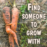 farmer and permaculture singles forum
