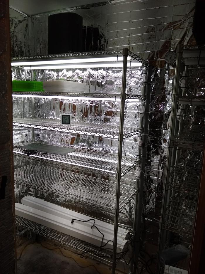 December 2020 built my microgreens/seed starting room.