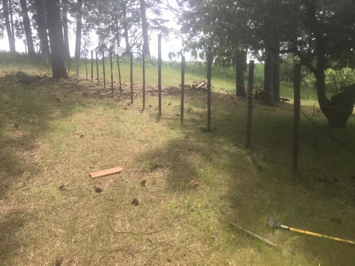 Posts in ground