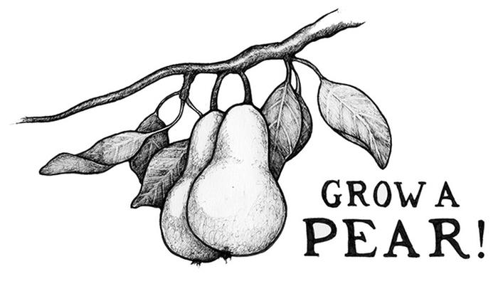 [Thumbnail for grow-a-pear-small-2.jpg]