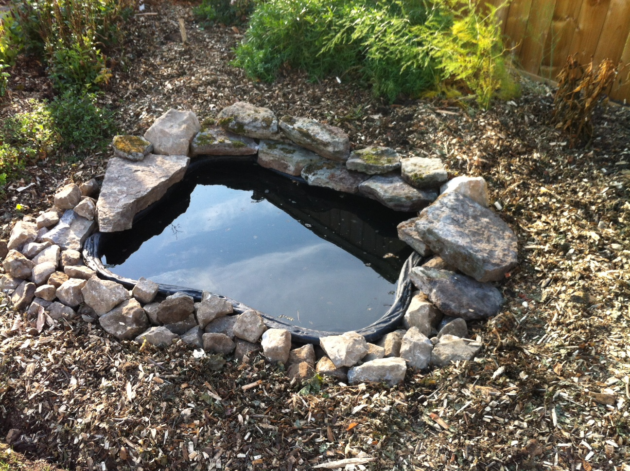 Empty preformed pond for winter ponds forum at permies for Small pond