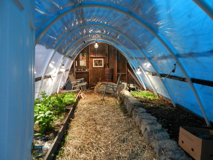 View into Hoop House from outside...