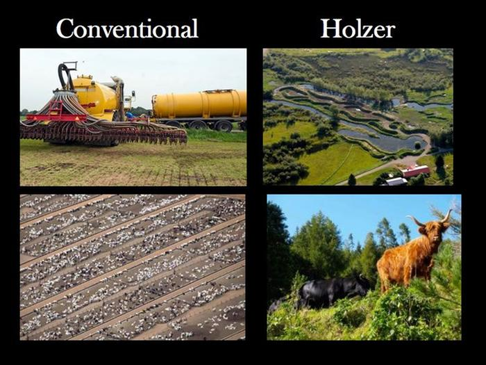 conventional vs holzer