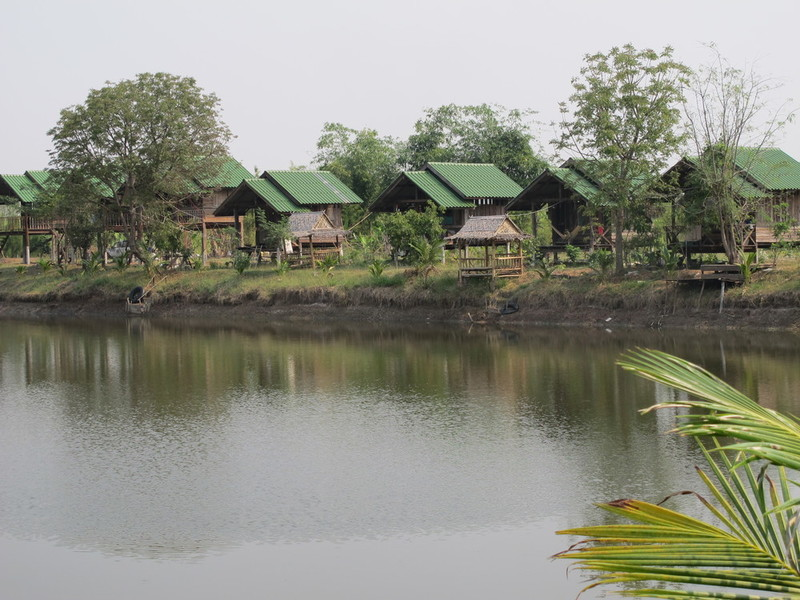 Thailand Permaculture And Natural Building Volunteers And