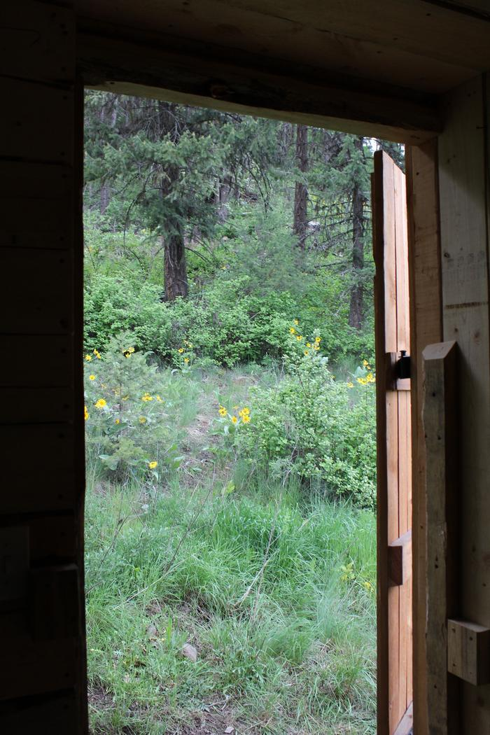 [Thumbnail for love-shack-vacation-rental-forest-medium.jpeg]