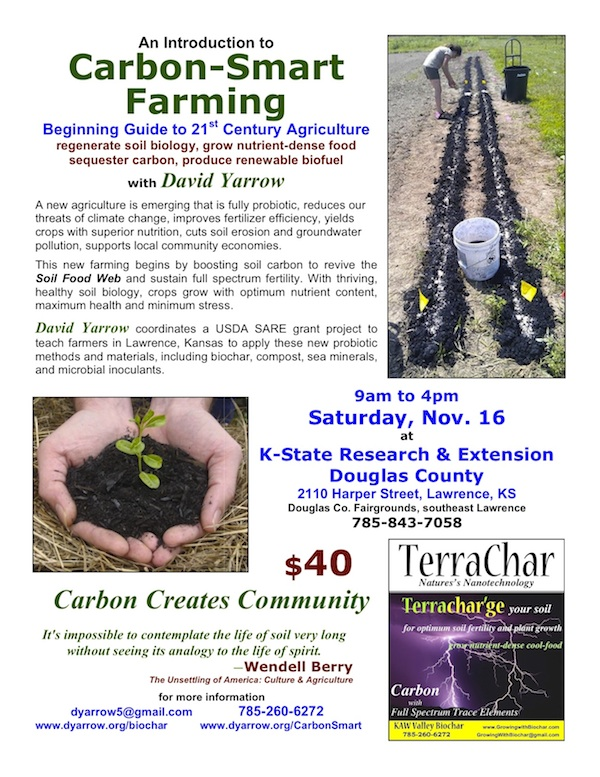 [Thumbnail for CarbonSmartFarming-poster_600.jpg]