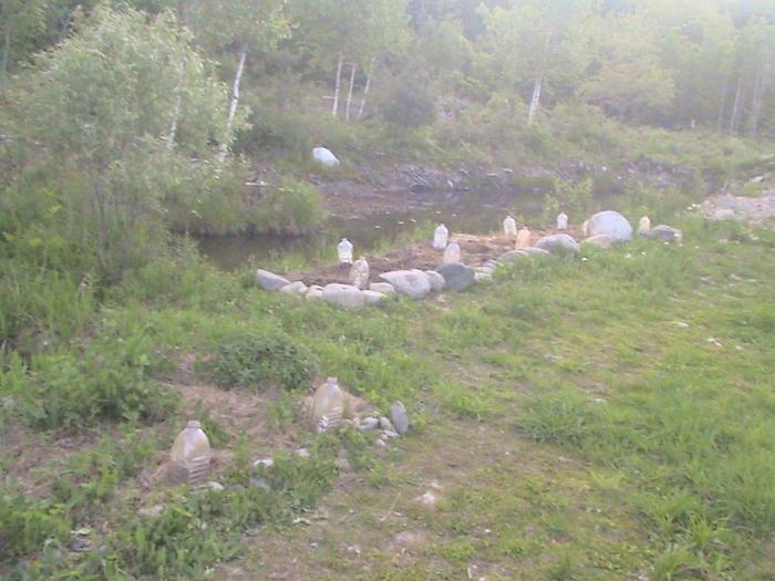 [Thumbnail for new-garden-along-blueberry-pond-shore-started.JPG]